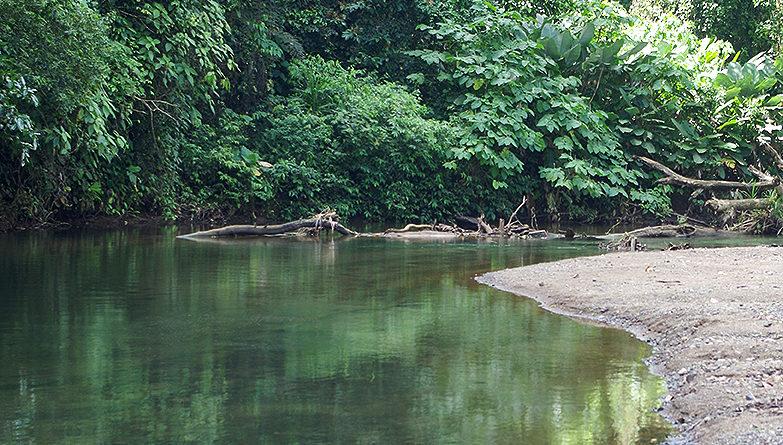 Reflexiones sobre el Conflicto del Agua en Costa Rica